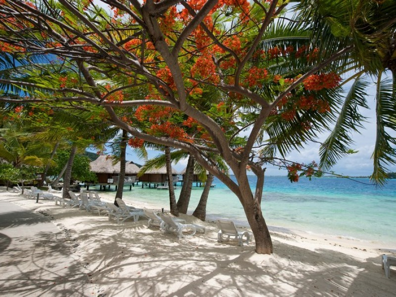 BOB Maitai Bora Beach