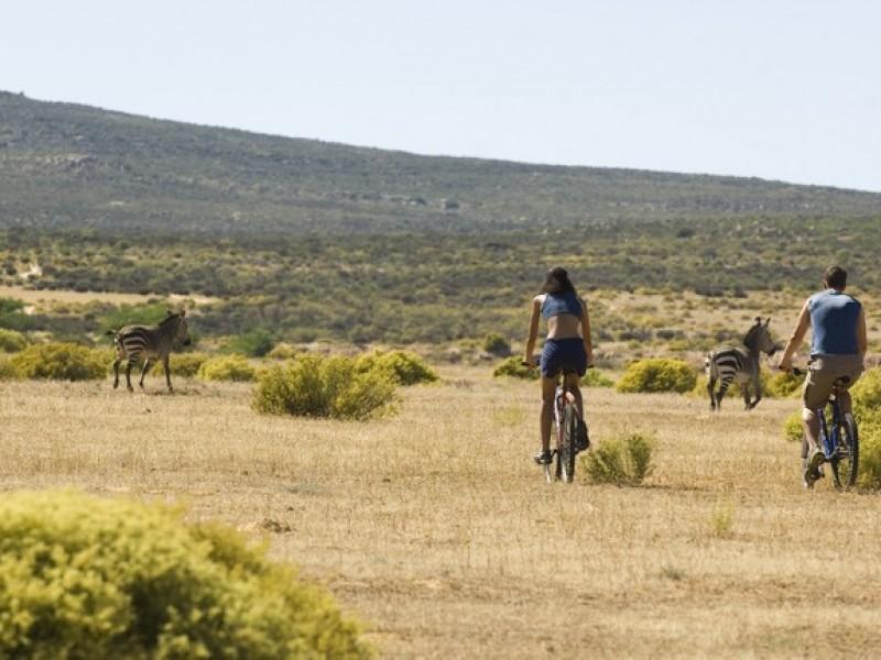 Bushman Cycling_008_S