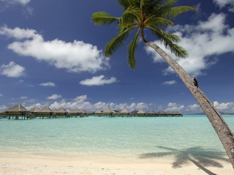 Intercontinental Bora Bora Moana 12