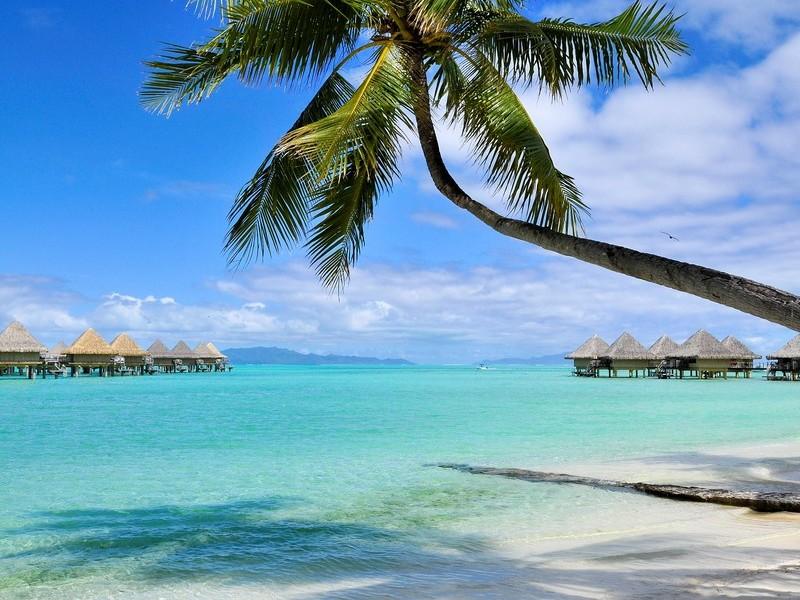 Intercontinental Bora Bora Moana 18
