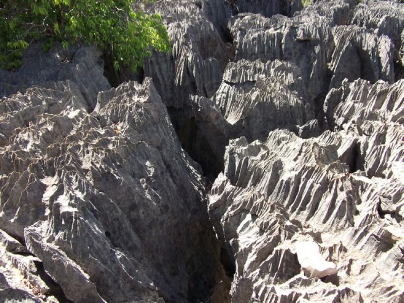 MADAGASCAR_ParcoANKARANA_3